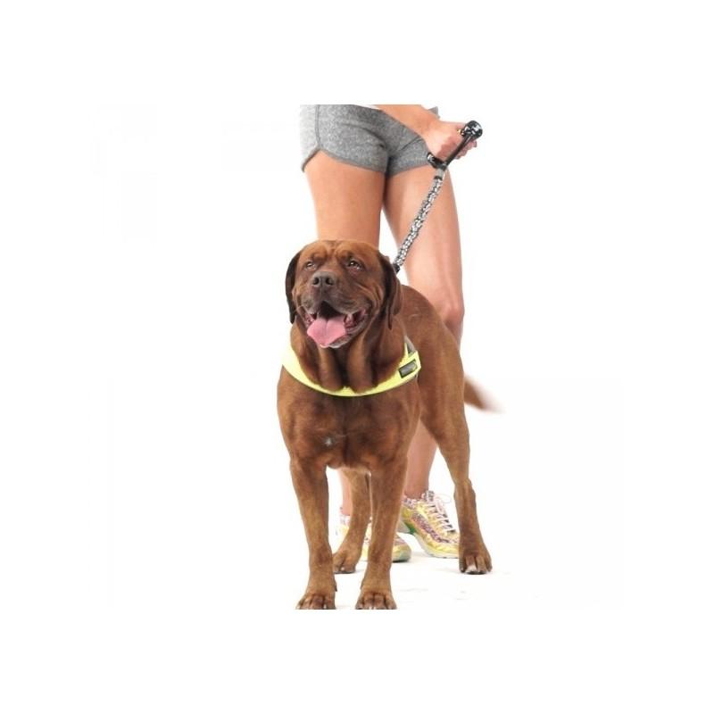 Laisse pour chien qui tire laisse anti choc promenade chien sportif - Laisse lasso pour chien ...