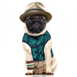 Tshirt pour chien Reversible CUBA - Milk&Pepper
