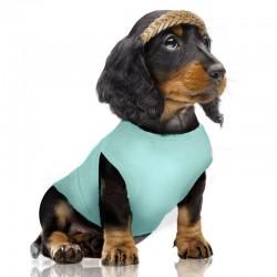 Tshirt pour chien SANDIA - Milk&Pepper