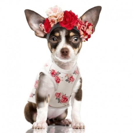 Tshirt chien Rosalie - T-shirt pour chien Milk&Pepper