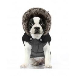 MANTEAU POUR CHIEN BOULEDOGUE/CARLIN - GAZOLINE - MILK & PEPPER