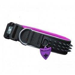 Collier pour chien fashion - Spikes Violet- Bellomania