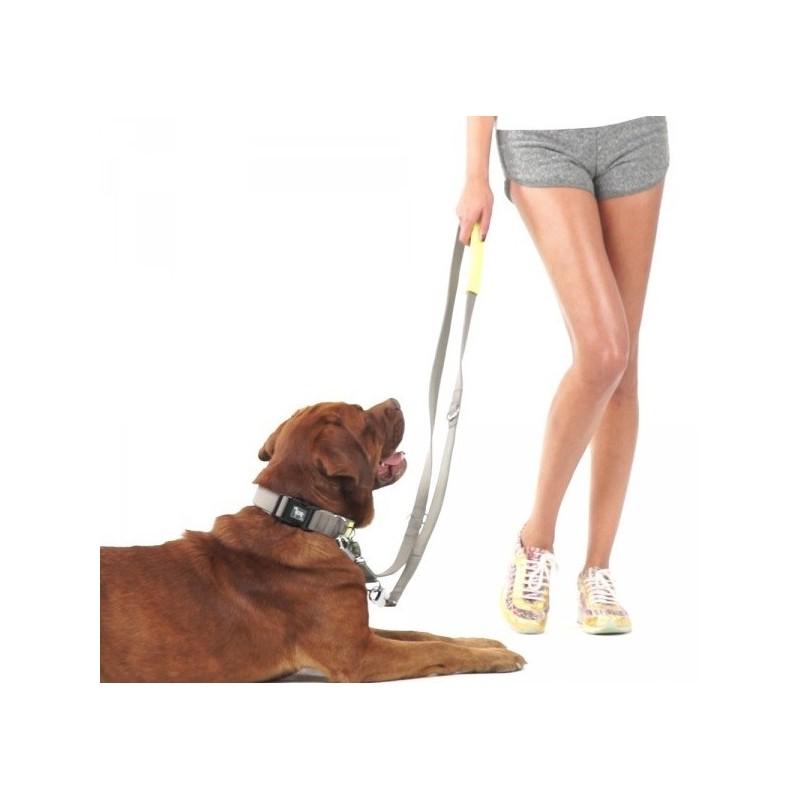 Laisse pour chien sport laisse ballade chien promenade chien bellomania - Laisse lasso pour chien ...