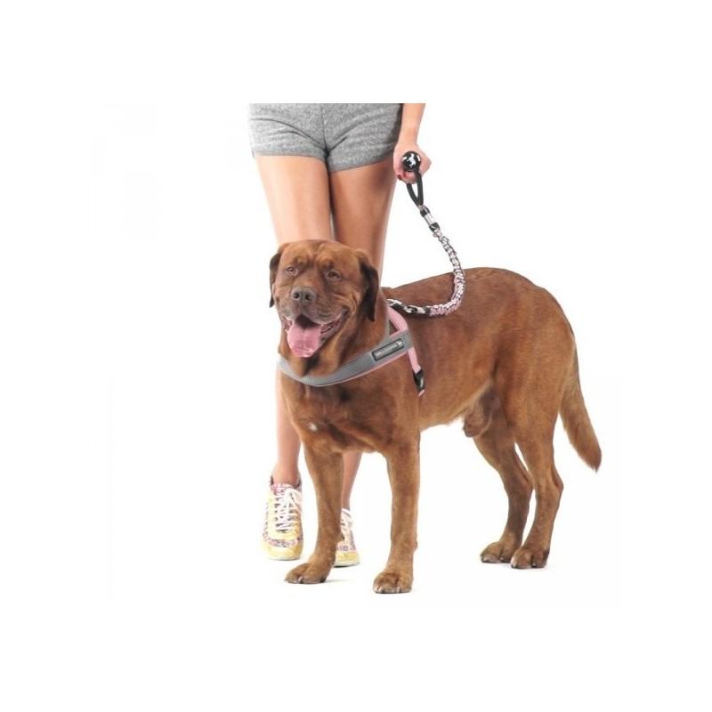 Laisse anti choc pour chien laisse chien sportif promenade chien sportif - Laisse lasso pour chien ...