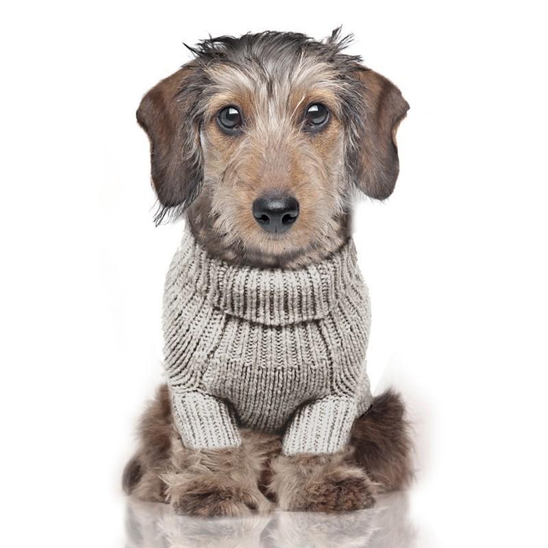 pull pour chien de luxe habit pour chien torso milk and pepper. Black Bedroom Furniture Sets. Home Design Ideas