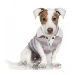 Polo pour chien St Tropez - Milk&Pepper